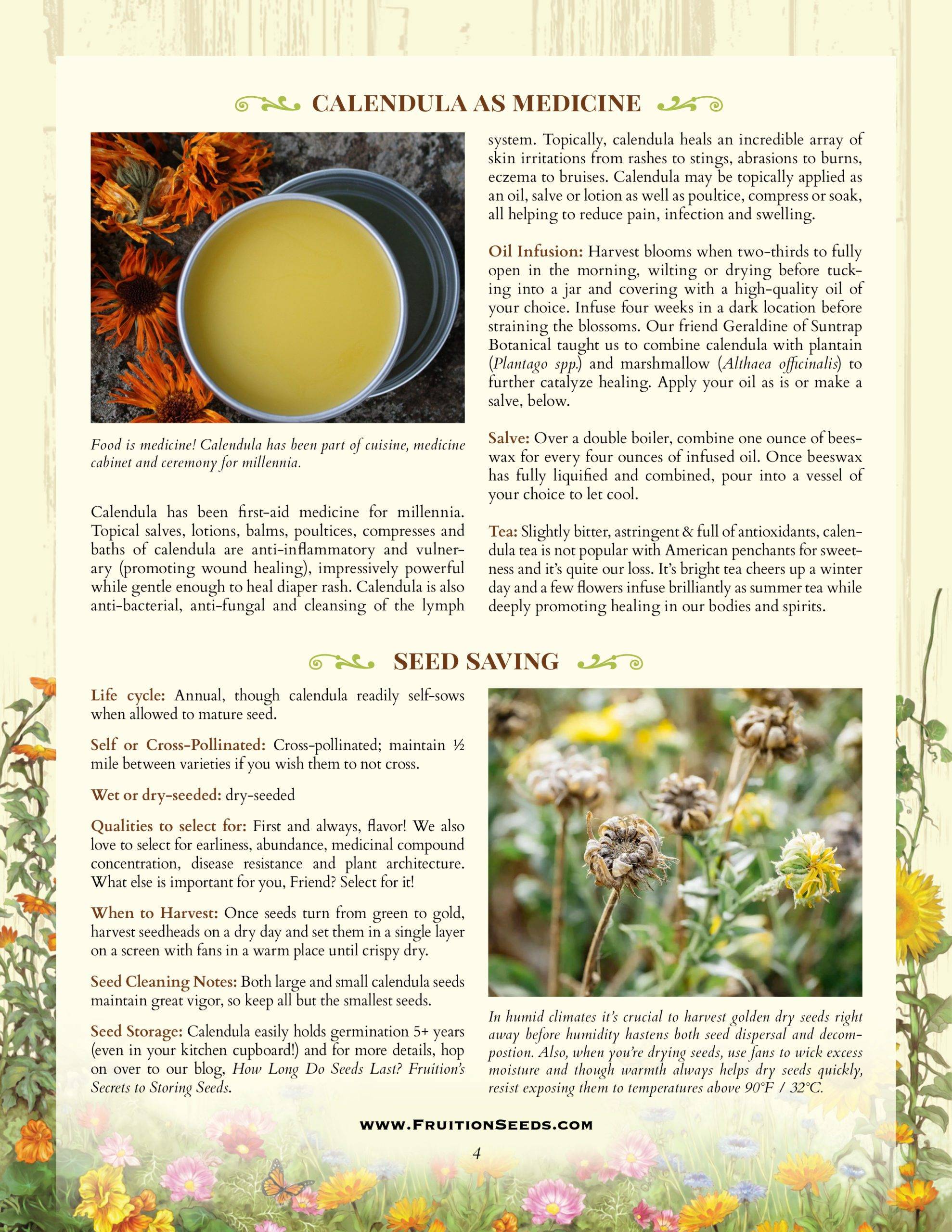 Growing Guide for Calendula Seedkeeping Guide