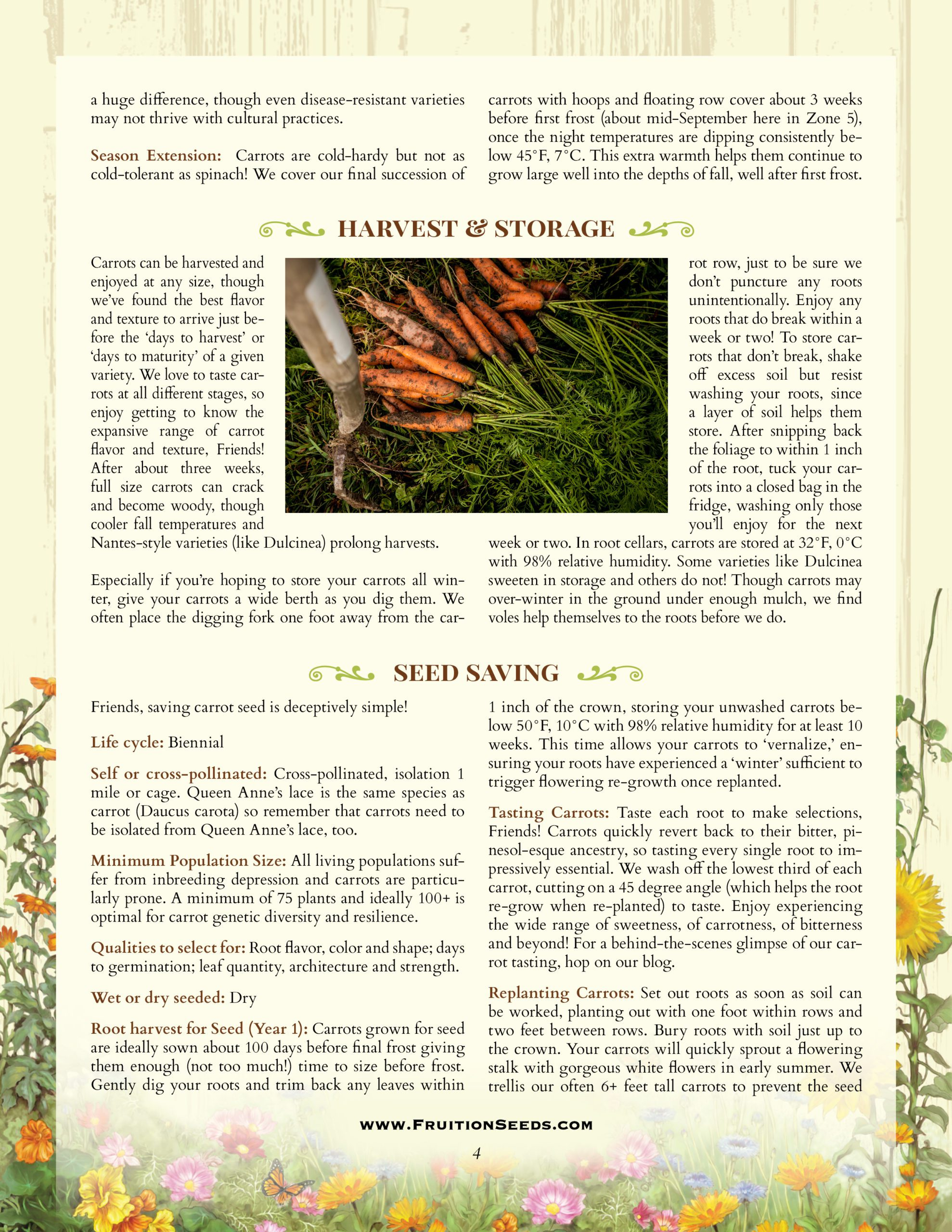 Thumbnail of Growing Guide for Sowing & Growing Series: Carrots