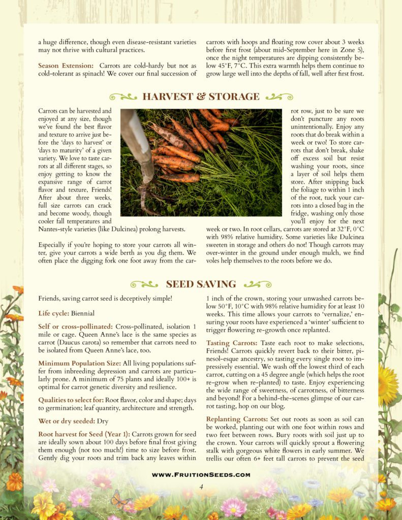 Thumbnail of Growing Guide for Carrot Seedkeeping Guide