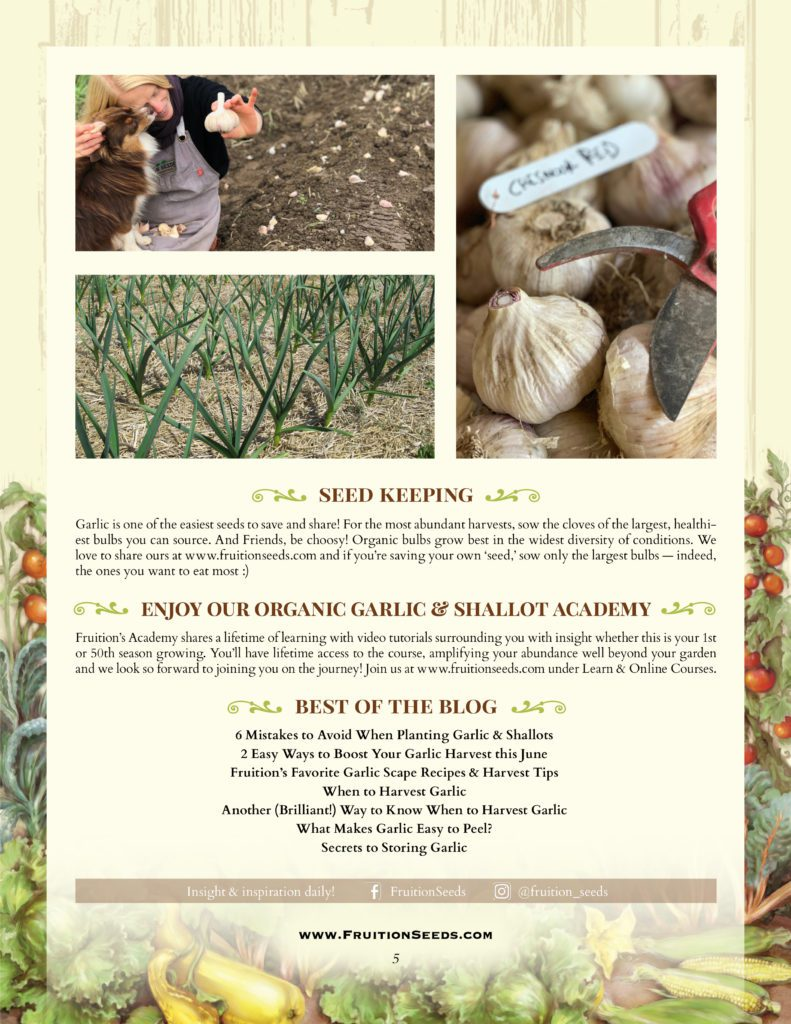 Thumbnail of Growing Guide for Garlic Seedkeeping Guide