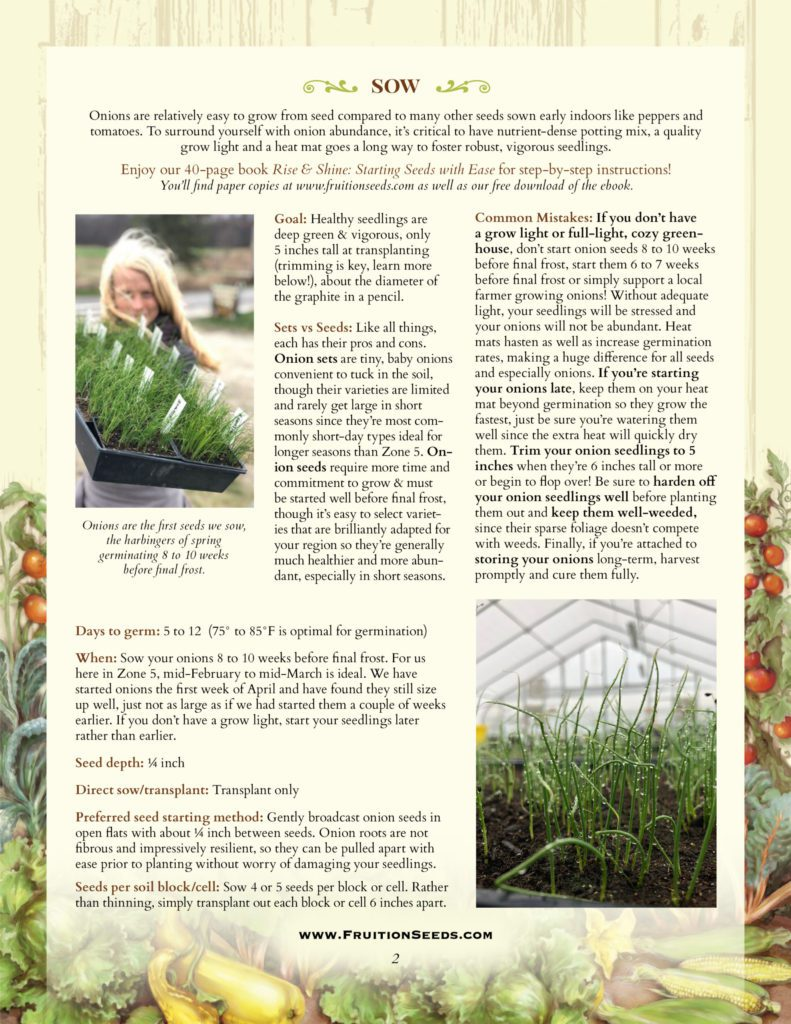 Thumbnail of Growing Guide for Onion Growing Guide