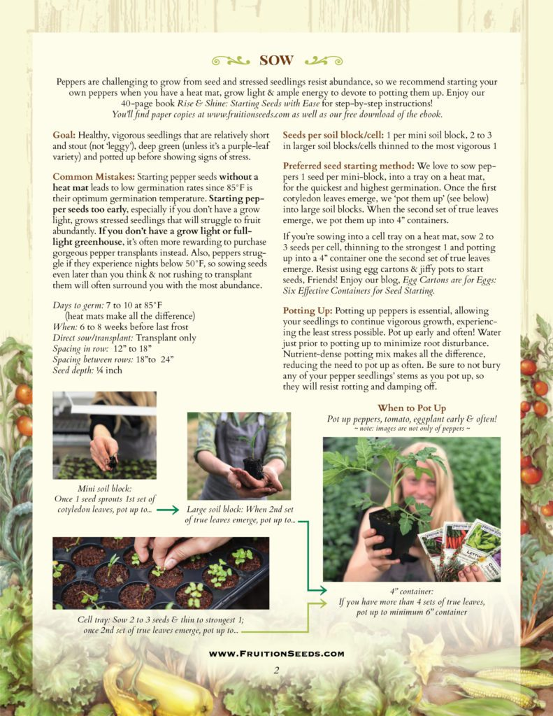 Thumbnail of Growing Guide for Pepper Growing Guide