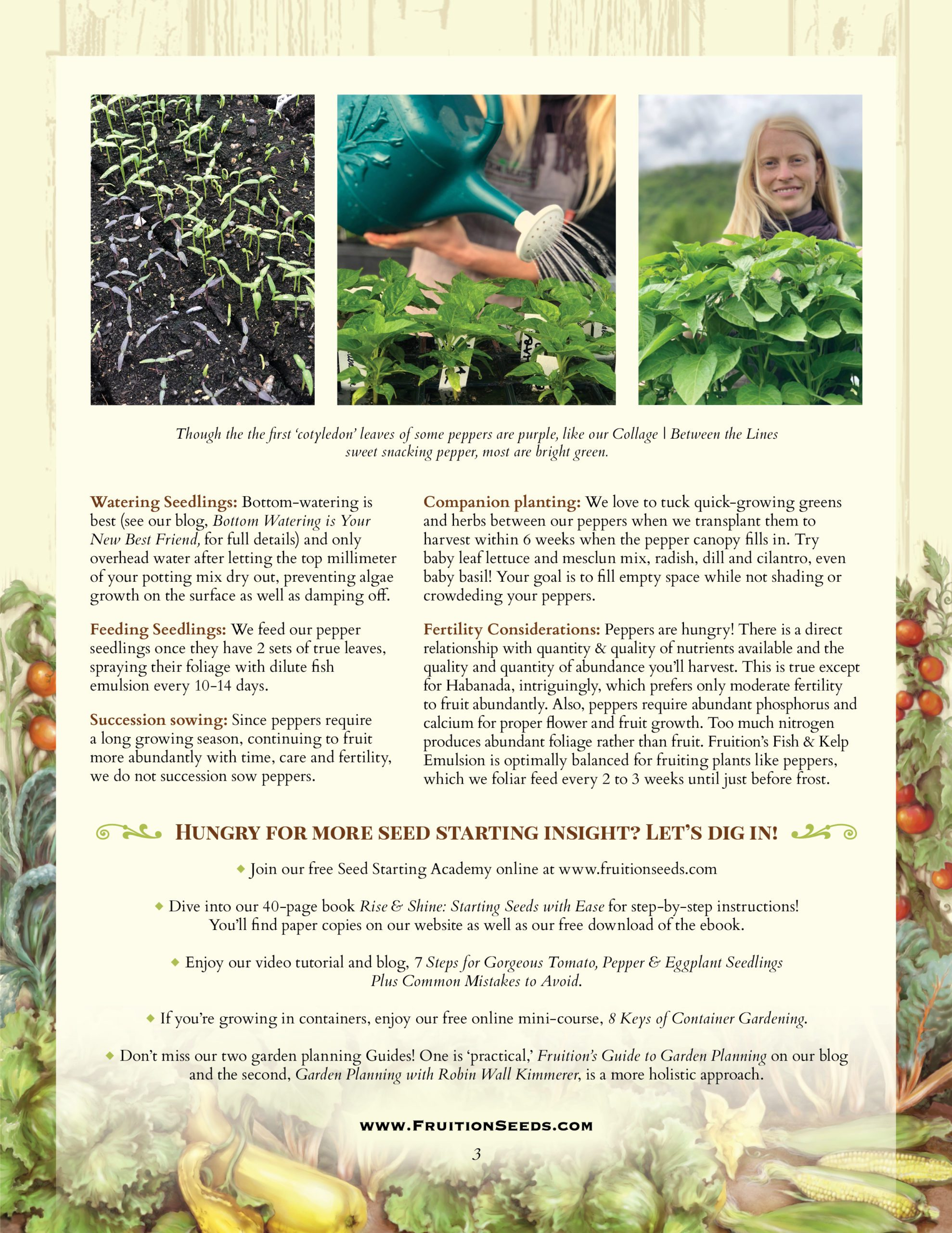 Growing Guide for Pepper Growing Guide