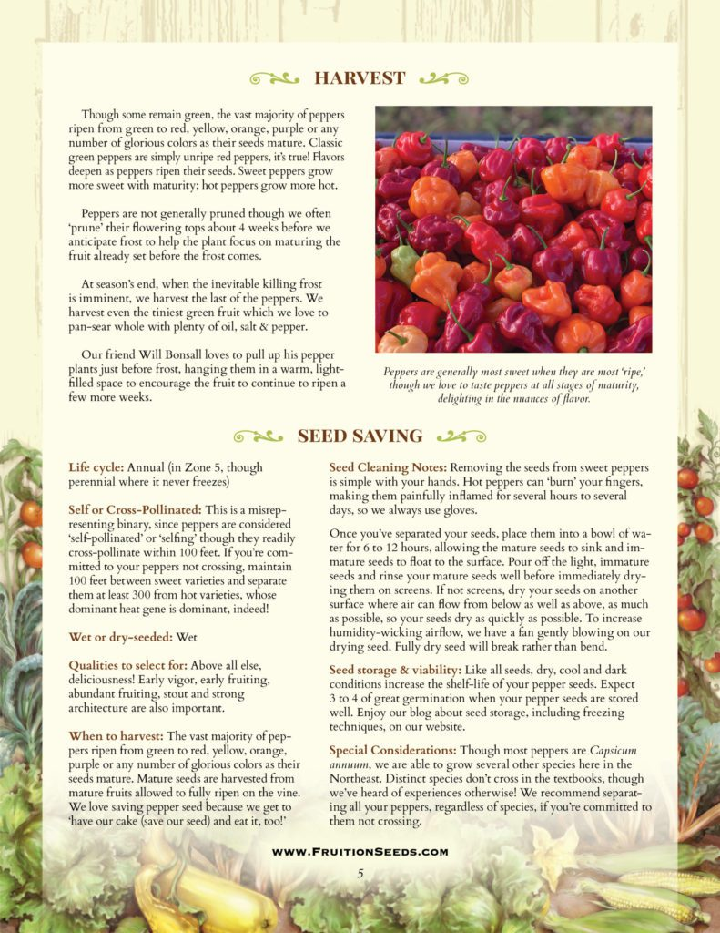 Thumbnail of Growing Guide for Pepper Seedkeeping Guide