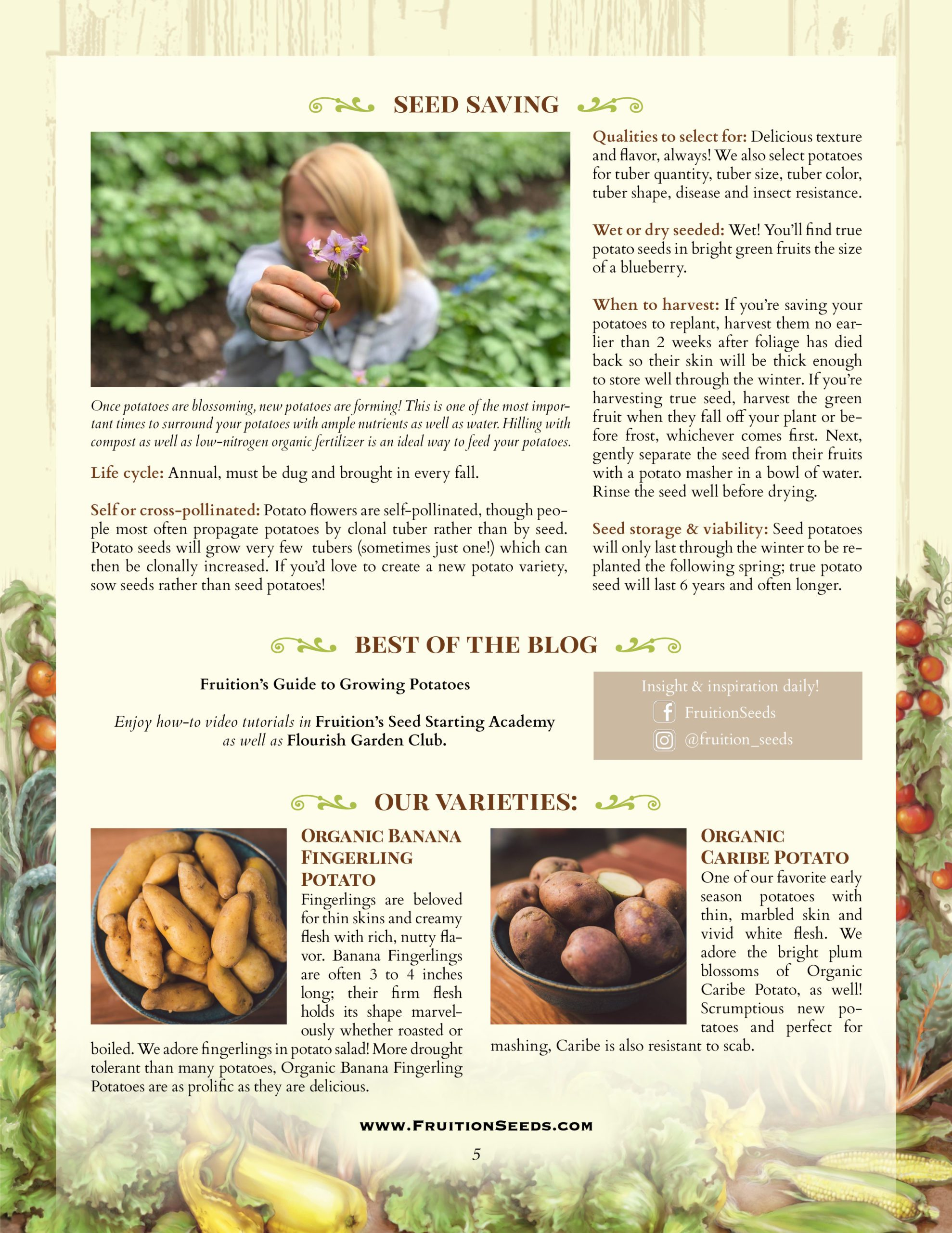 Growing Guide for Potato Seedkeeping Guide