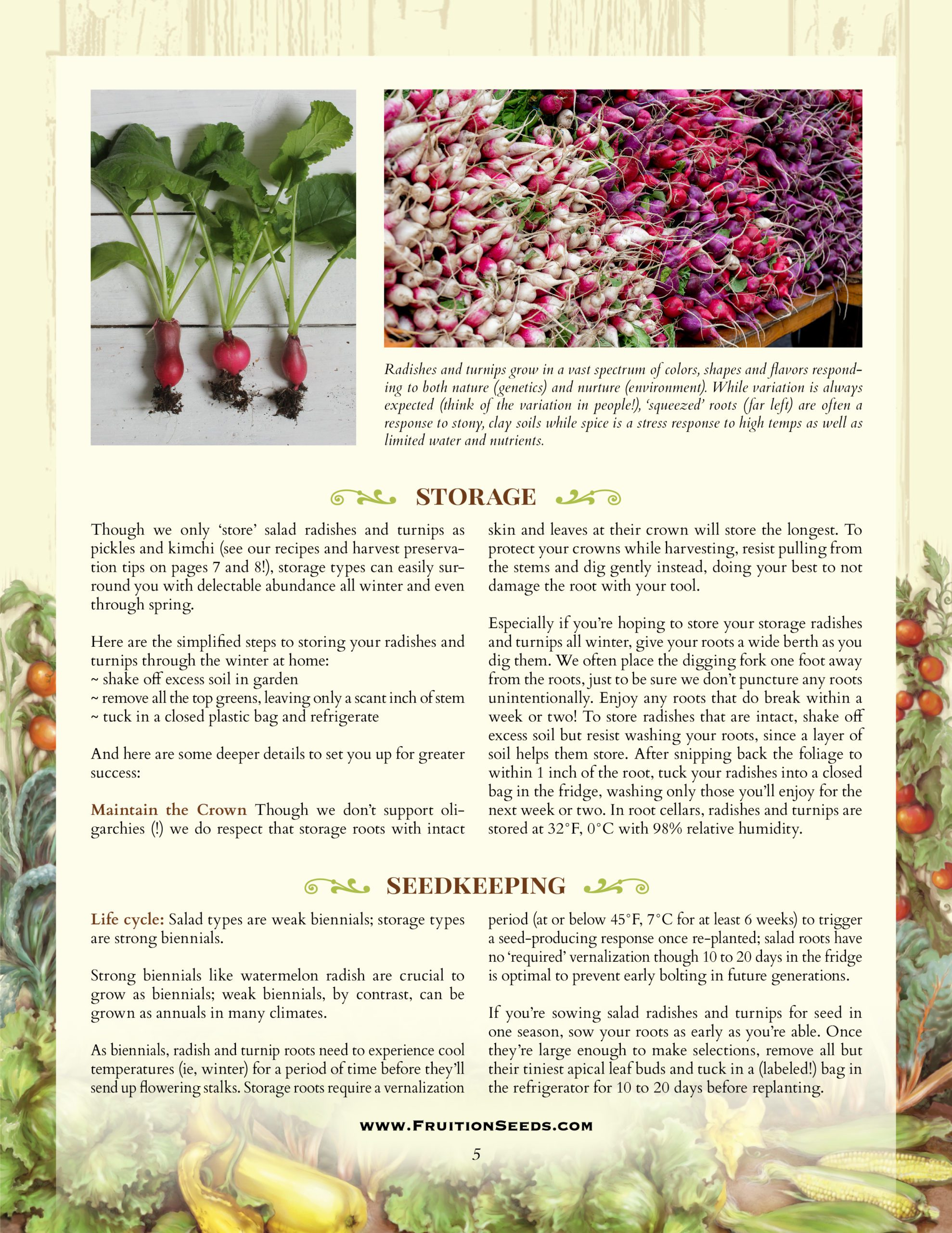Growing Guide for Radish + Turnip Seedkeeping Guide
