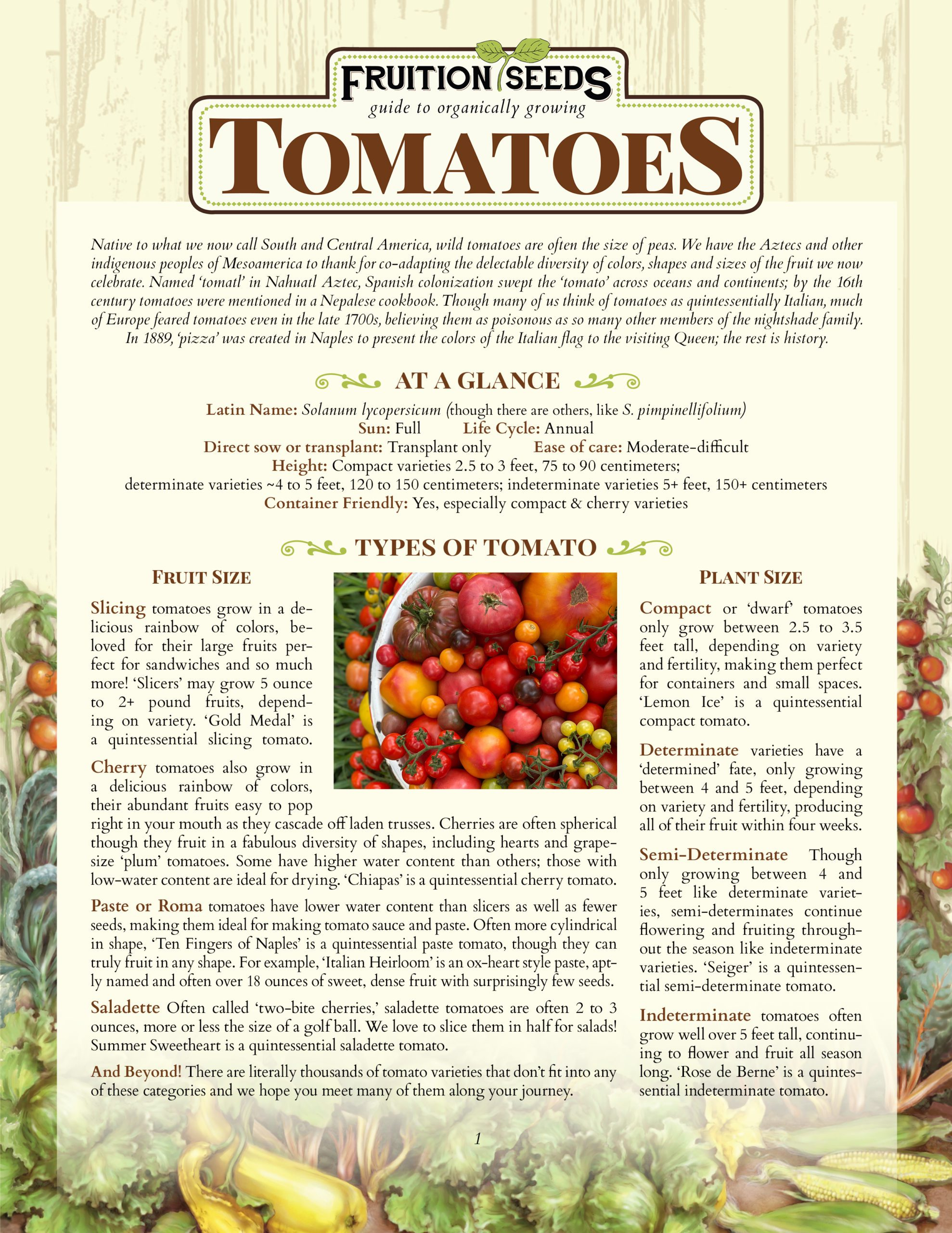 Growing Guide for Tomato Growing Guide