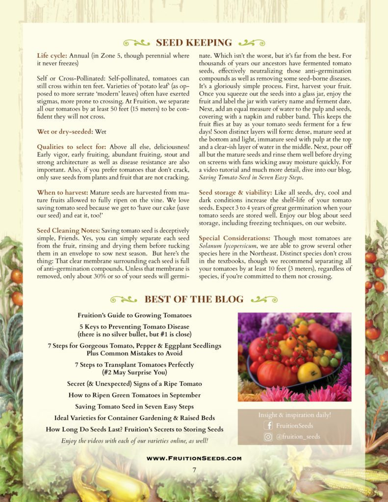 Thumbnail of Growing Guide for Tomato Seedkeeping Guide